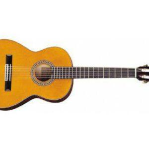 گیتار آریا Ak20