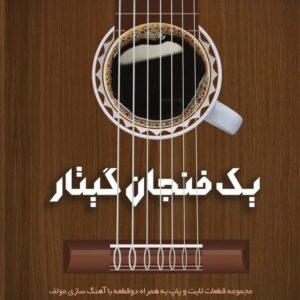 یک فنجان گیتار